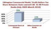 Ethiopian banks' revenue grew to 24 percent