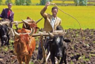 Food insecurity in Ethiopia leads to inflation rise - report