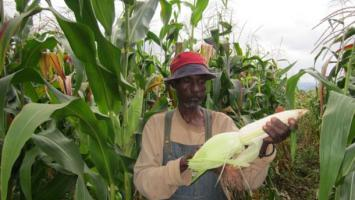 Africa's Land Commissions commit to securing community land rights