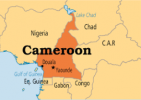Cameroon set to ratify the African Legal Support Facility Treaty