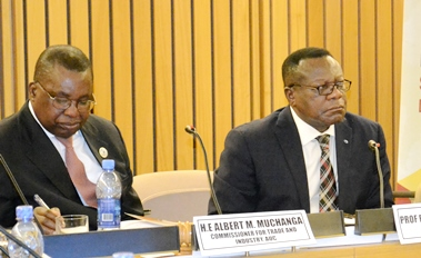 Foundation expresses doubt about realization ofAfrican free trade protocol