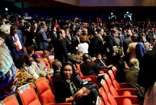 Development financier advises Africa to diversify energy sources