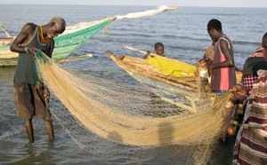 Experts set to discuss regional fisheries, aquaculture strategy