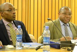 Rwanda, Niger ratify African free trade bill