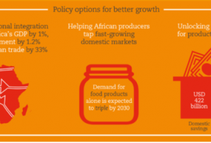African Union launches Africa's Development Dynamics report