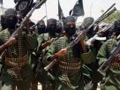 United States redefines al-Shabaab