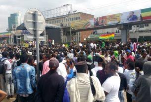 Ethiopia PM call on Diaspora to set up trust fund