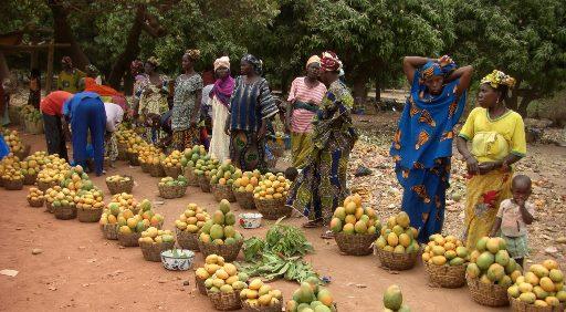 Smallholder farmers in Mali secure finance