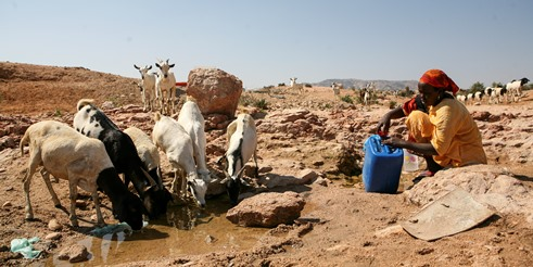 IBM researchers assist Kenya combat extreme drought conditions