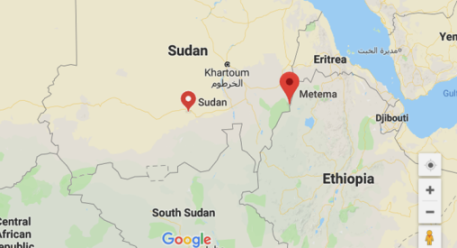Amhara Region urges Ethiopian government to withdraw Sudanese army