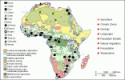 Experts urge Africa to integrate statistics, geospatial information
