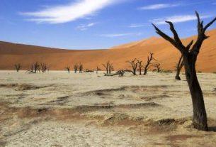 Africa climate meeting in progress in Nairobi