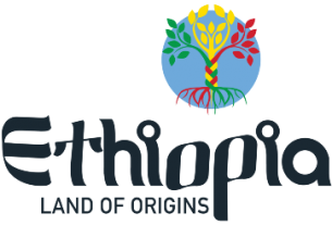 Ethiopia to start visa on arrival for all African citizens