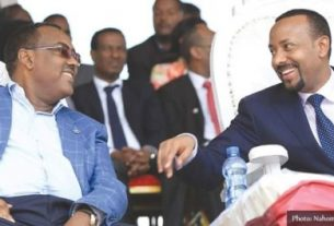 Congress agrees to sustain PM Abiy's reform in Ethiopia