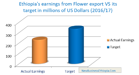 Ethiopia secures $229 from flower export achieving 68% target