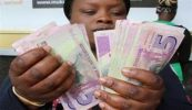 African Development Bank launches report on Zimbabwe's economy