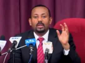 Ethiopia premier says arrest targets criminals, not tribe