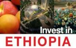 Ethiopia launches online investment guide
