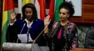 Political parties in Ethiopia approve discussion guideline