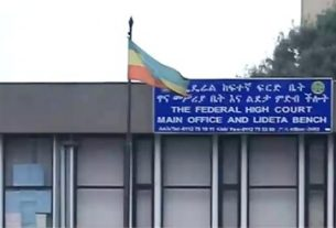 Suspect human rights offenders in Ethiopia appear court