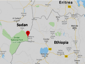 President urges Ethiopian army to investigate civilians' death