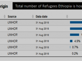 UN applauds Ethiopia new refugees' law