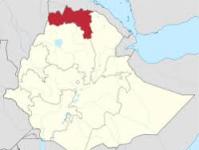Ethiopia's Tigray collects $43 million tax