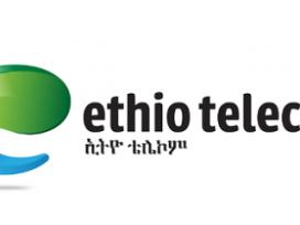 Ethio Telecom gets priority for privatization