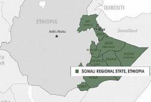 Ethiopia's rebel group abandons arm struggle