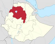 Armed men kill at least 16 people in Ethiopia