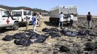 Ethiopian crashed plane findings disproved pilot error reports