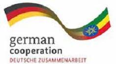 Ethiopia jails 3 GIZ employees for illegal trade