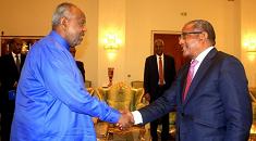 Ethiopia's foreign minister meets Djibouti President