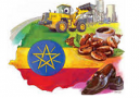 Ethiopia approves $13.5 billion budget for next year