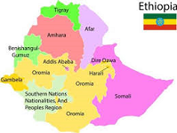 Over 500 people arrested in South Ethiopia