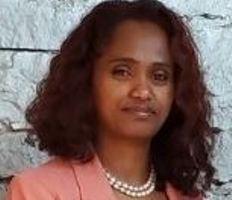 Toronto to host investment in Ethiopia business forum