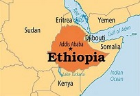 Ethiopia orders civil servants to stay at home