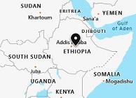 COVID-19 patients in Ethiopia reaches 21