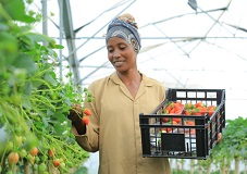 Ethiopia secures $400 million from horticulture export
