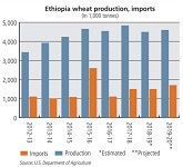 Gemcorp wins bid to supply wheat to Ethiopia.