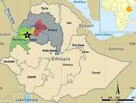 Armed group kills 15 people in Ethiopia