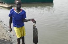 Ethiopia's Gambella region aims to export fish
