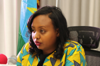 Ethiopia to help vandalized investments recovery