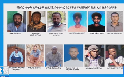 Ethiopian intelligence foils Al-Shabaab, ISS attacks