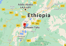 Seven passengers die in traffic accident in Ethiopia