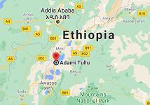 Seven passengers die in traffic accident in Ethiopia