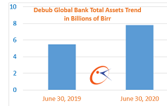 Debub Global Bank profit up 33 percent
