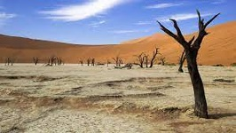 ECA leads Africa's fight against climate change