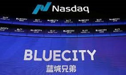 BlueCity Holdings Limited sued for misleading shareholders