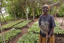 IFAD named top development aid agency